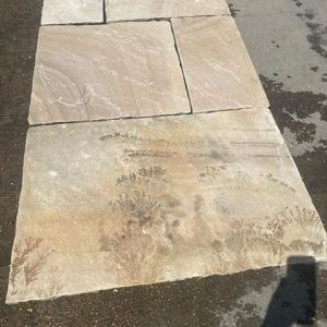 Natural Indian Sandstone Fossil Buff Tumbled